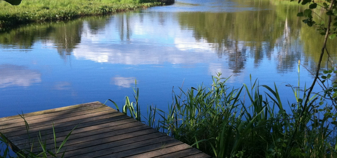 A quiet, secluded dock tucked into the shade of a small pond