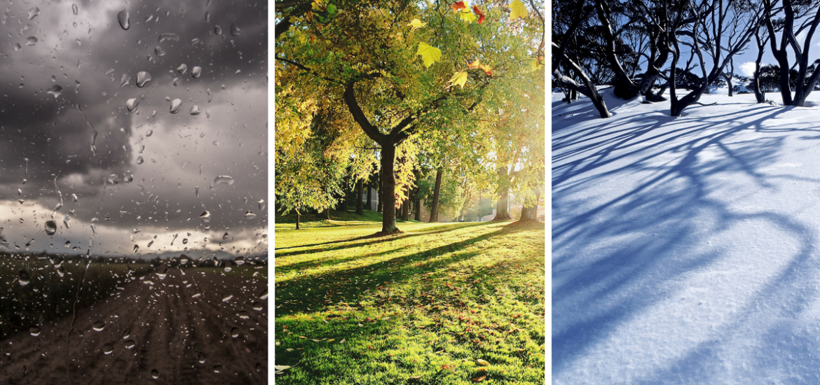 Spring has unpredictable weather. Life can be just as unpredictable.