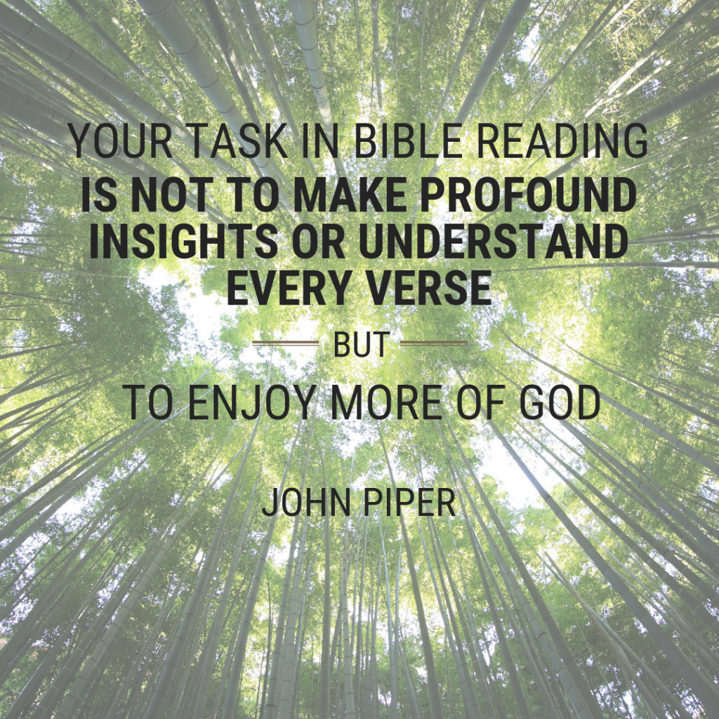 Your task in Bible reading is not to make profound insights or understand every verse, but to enjoy more of God.