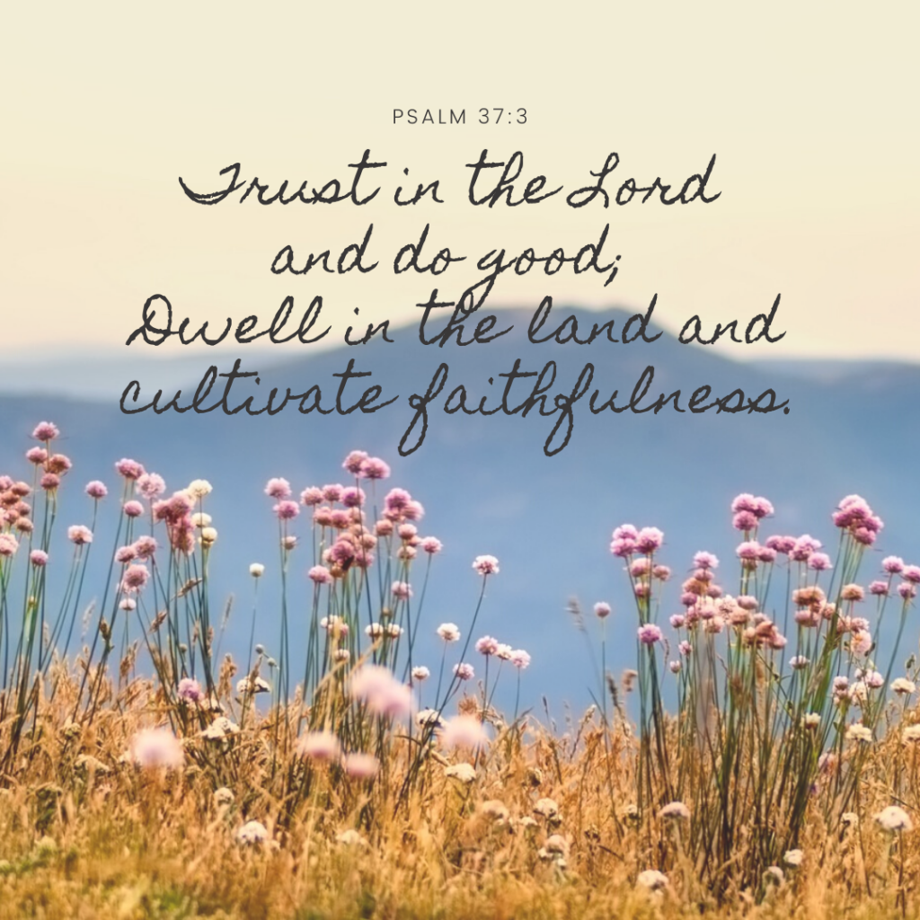 Trust in the Lord and do good; dwell in the land and cultivate faithfulness.