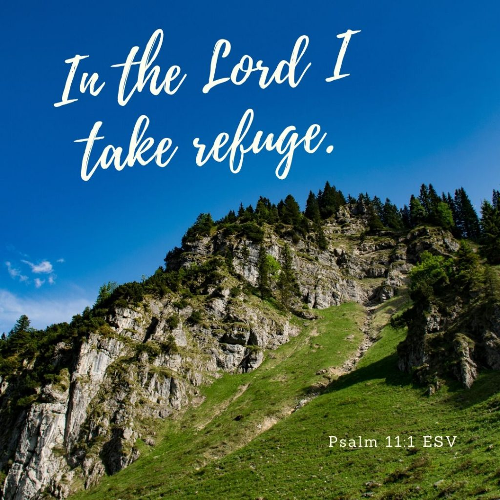 "Psalm 11:1 ESV ""In the Lord I take refuge."""